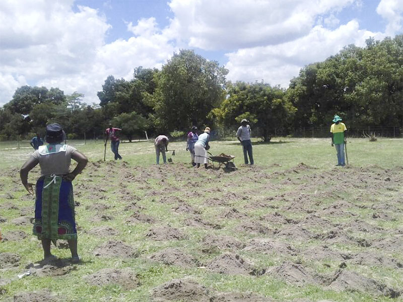Conservation Agriculture
