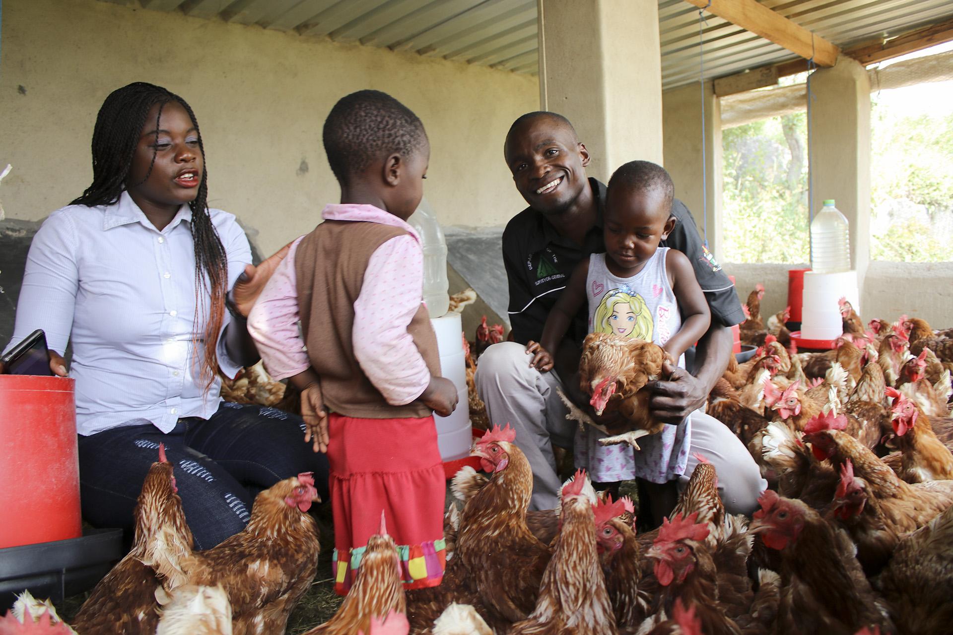 Poultry Farming – pigad