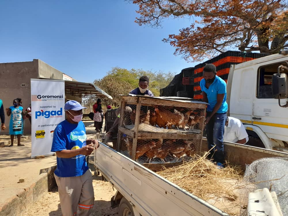 Empowering smallholder farmers